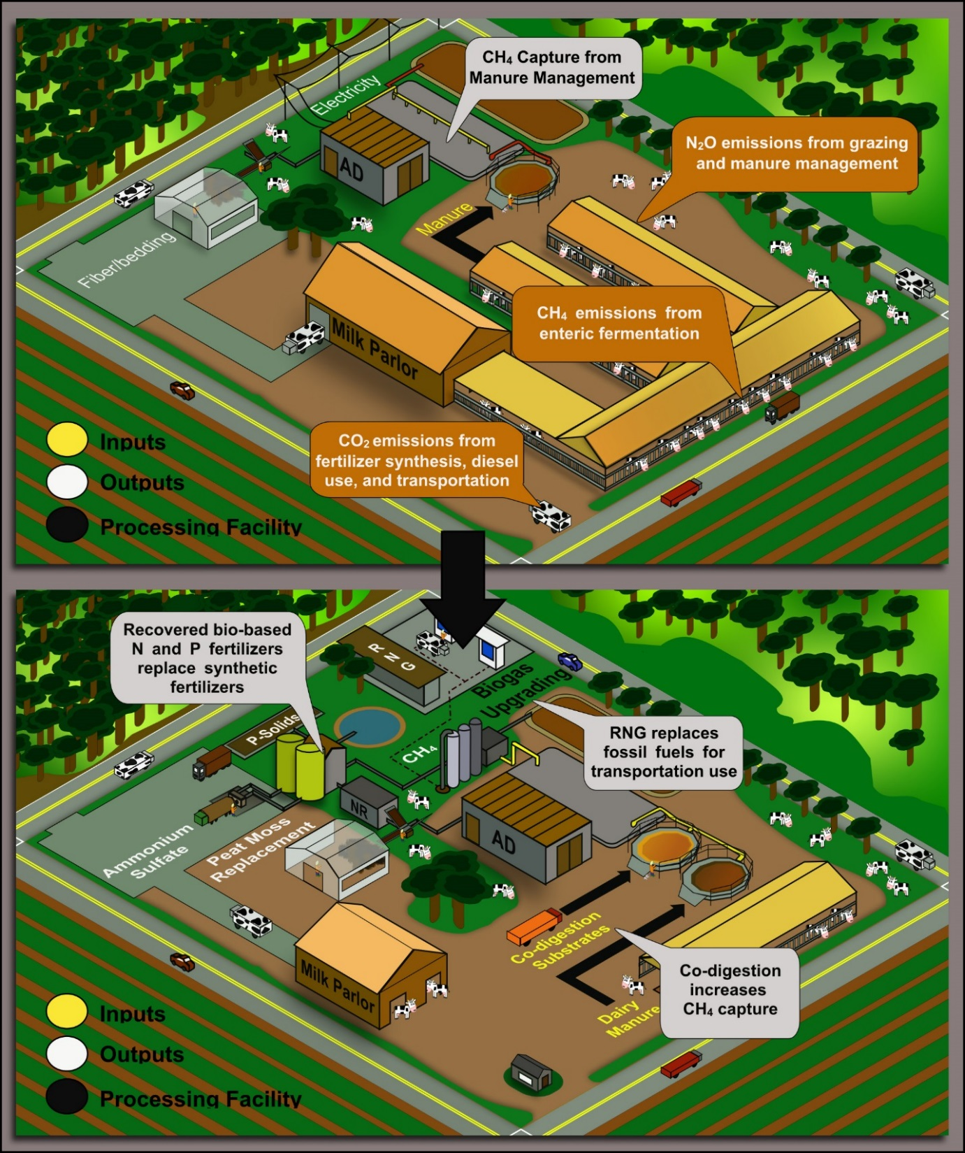 Figure 1: Dairy waste biorefinery (bottom image) can further reduce the carbon footprint with the addition of co-digestion, nutrient recovery (NR), and biogas upgrading (CNG) compared to a traditional dairy digester (top image) (note: dairy herd size appears reduced in lower graphic due to limitations of artistic rendering; assume same herd size)