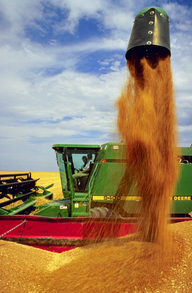 Harvest is an export of nutrients. Photo: S. Bauer, USDA