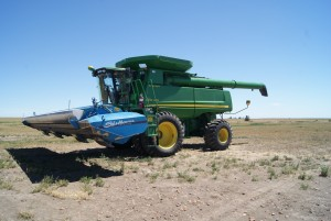 Adaptations can include new equipment to handle harvest differently, like the stripper header, mounted on this combine. Photo: H. Davis