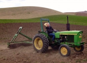 PhD student Rachel Wieme preparing the field for the establishment of Entry #2; April 2014.