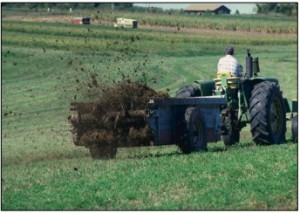 Manure field spreading. Photo: NRCS.