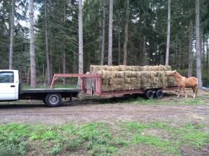 hay trailer