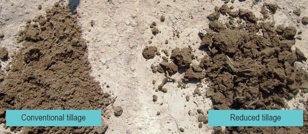 "soil on the left labelled ""Conventional tillage"" is a fine texture with few aggregations; soil on the right labelled ""Reduced tillage"" is a coarse texture with many chunky aggregations and visible organic matter."