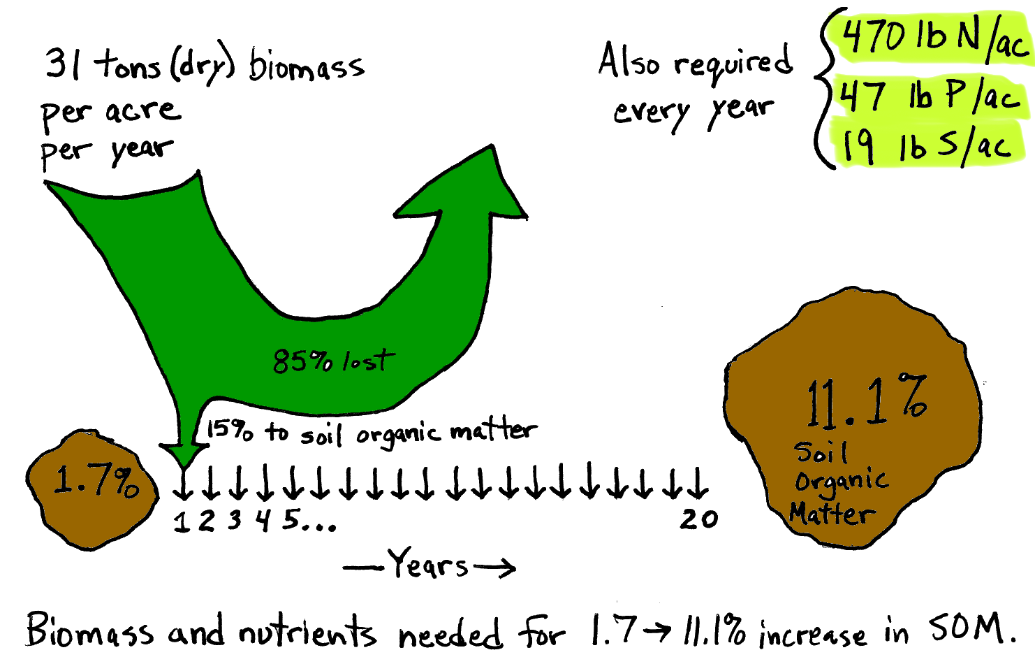 Diagram indicates that every year, 31 tons (dry) biomass per acre per year is needed in order for 15% to go to soil organic matter (while 85% is lost), every year for 20 years to go from 1.7% to 11.1% soil organic matter. Also required every year is 470 lb N/ac, 47 lb P/ac, 19 lb S/ac.