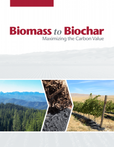Cover of Biomass to Biochar final report