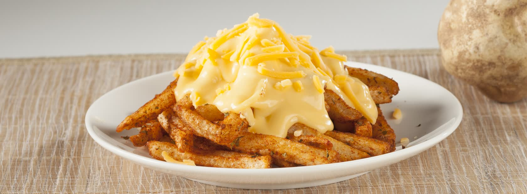 Cheesy-Fries