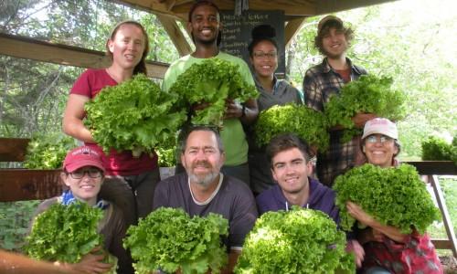 WWOOF-USA Host Farmer & WWOOFers in MN.