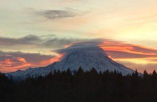 Mt. Rainier at Wellness Paradise Farm
