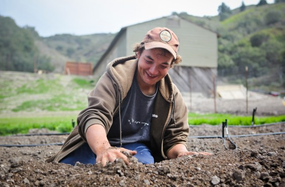 How It Works « WWOOF-USA