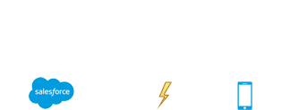 Booking Ninjas Logo