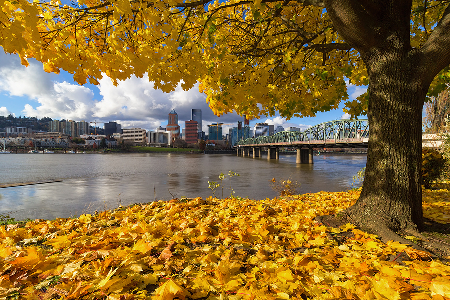 Fall Foliage-Oregon-travel healthcare jobs oct 15