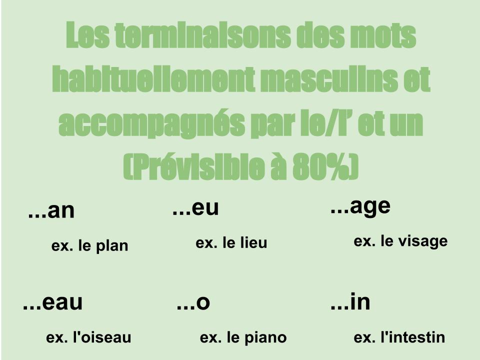French Terminaisons masculines Resource Preview