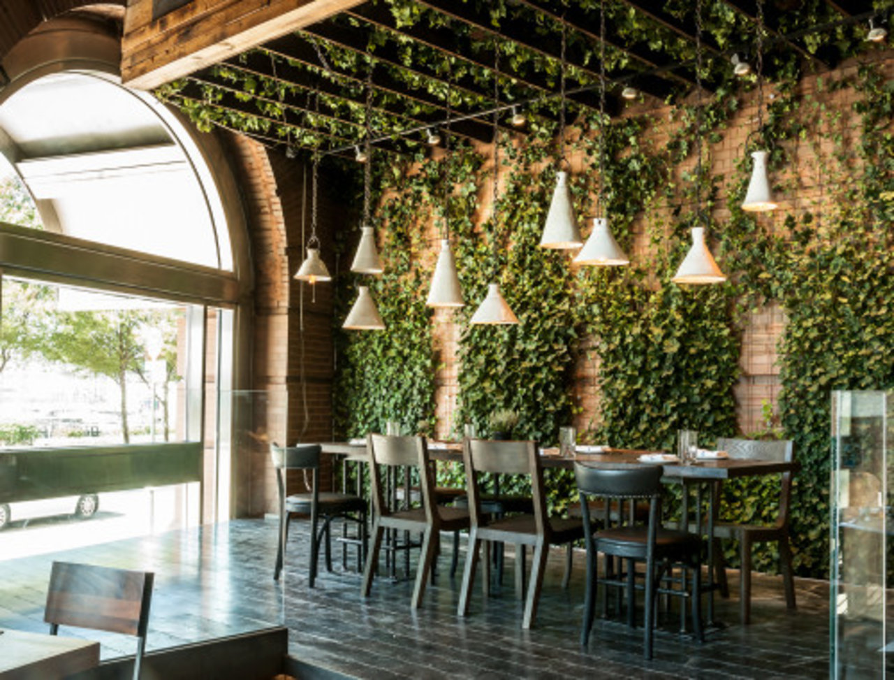 Breathe New Life Into Your Space With A Living Wall The