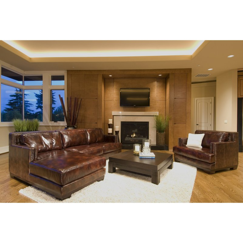 Davis 2 Piece Top Grain Leather Sectional Collection (Right Arm Facing  Loveseat, Left