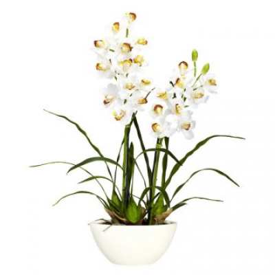 Cymbidium Orchid with White Vase Silk Flower Arrangement