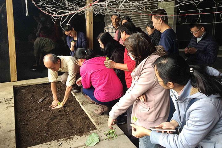 綠色生活館-手作課程-花台種菜好上手