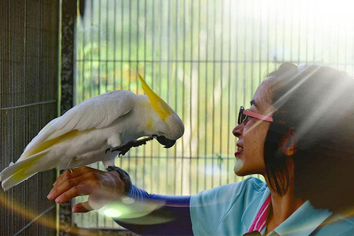 福智關廟護生園區,請動物溝通師探詢動物心聲