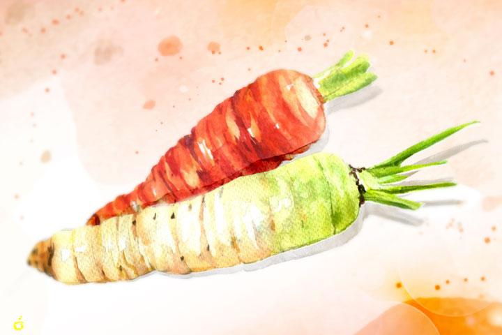 紅白蘿蔔的滋味