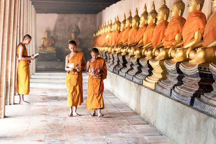 仁波切說「佛陀本生故事」的取材來源