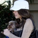 Emmy Rossum Pampers Her Pup