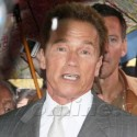 Arnold Schwarzenegger Unveils His New Statue