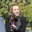 Miley Cyrus Hangs Out With Mary Jane