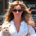 Ashley Tisdale Carries Her Dog To The Nail Salon