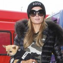 Paris HIlton And Her Dog Are An Adorable Pair