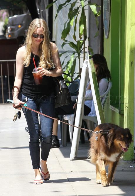 sunglasses Amanda Seyfried skinny jeans tank dog