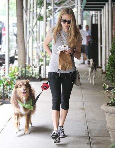 Amanda Seyfried blonde sunglasses dog cute
