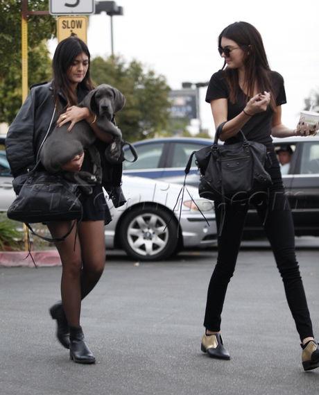 Kendall Jenner  dog purse jeans reality kardashian pinkberry