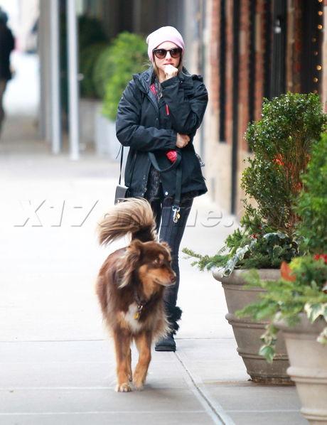 Amanda Seyfried New York Finn dog walking