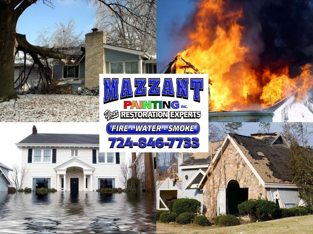 disasters with mp logo and phone number