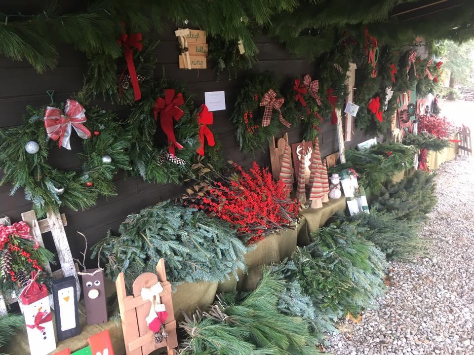 4 McConnell's Christmas Tree Farm