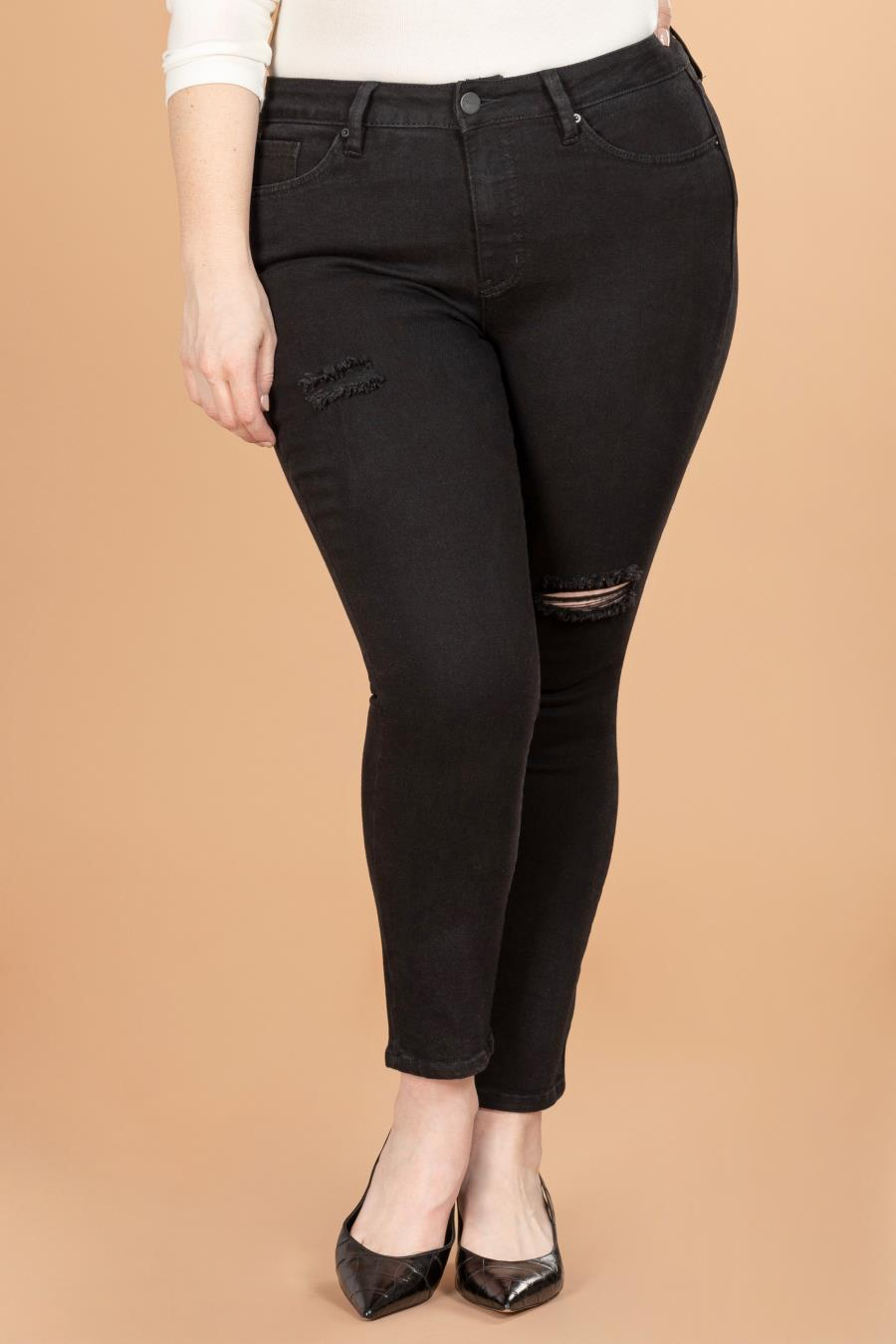 Women Plus Size Vintage Dream High-Rise Ankle Jean With Slight Distressing