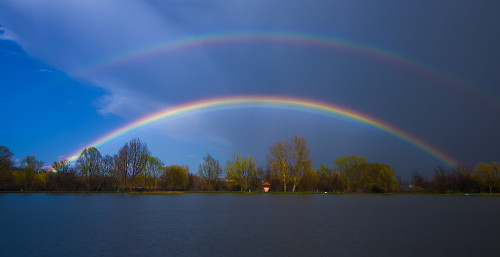 double rainbow - licensed