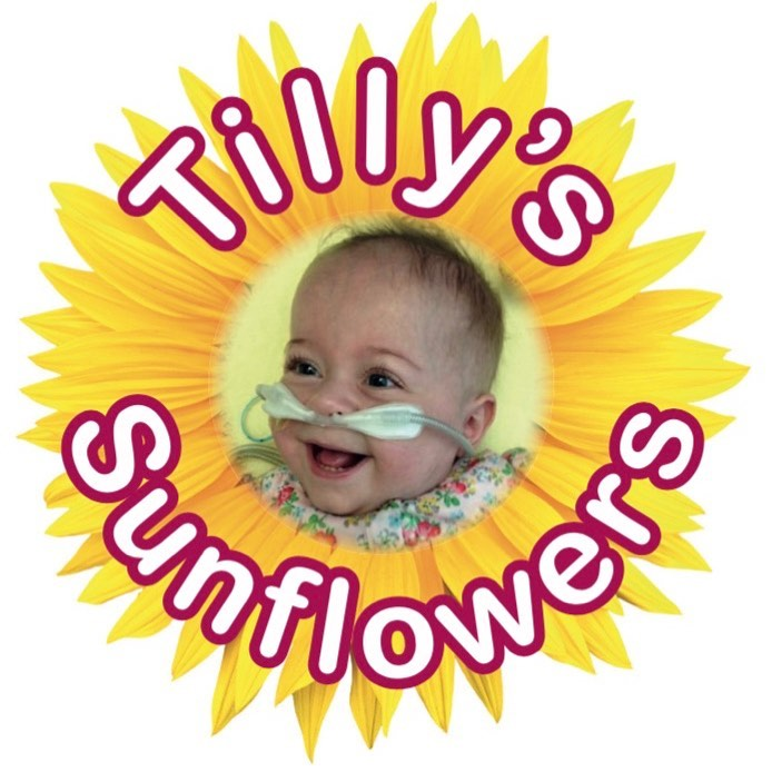 Tilly's Sunflowers 2020 update