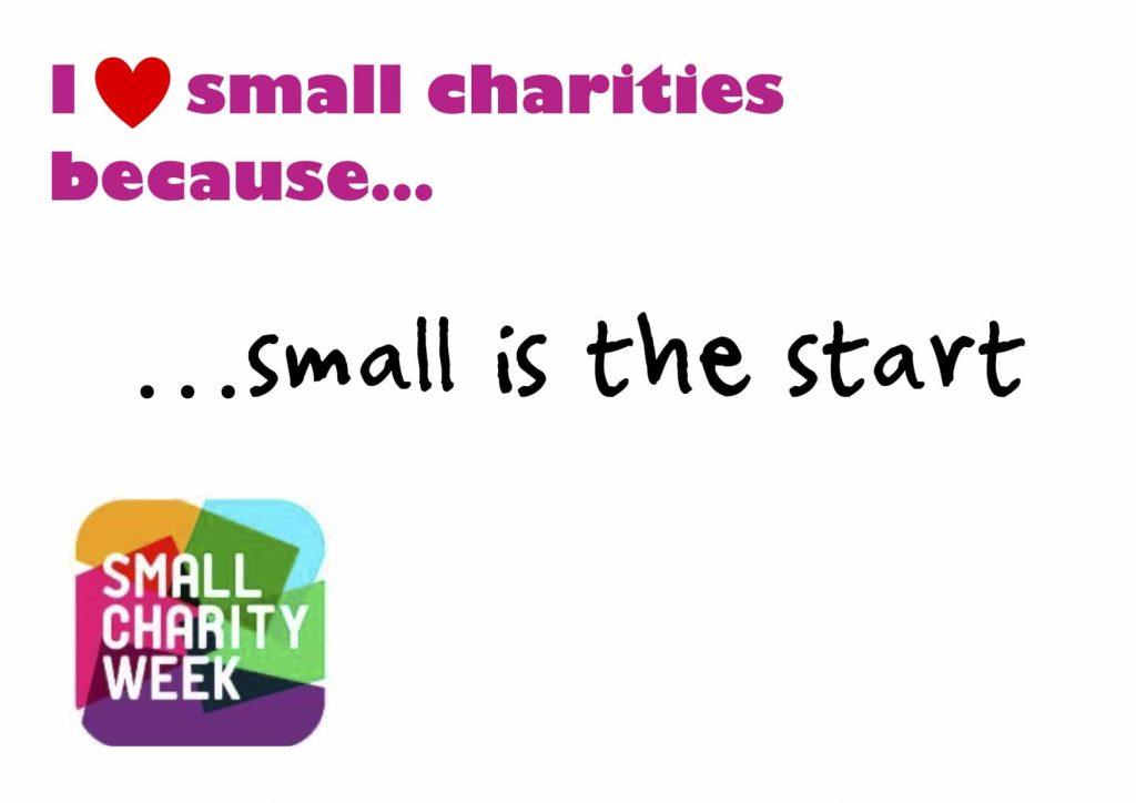 Small Charity Week 2020