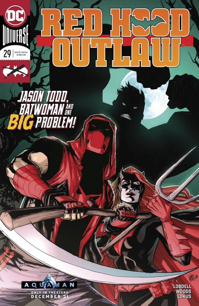 Red Hood Outlaw #29 CVR A