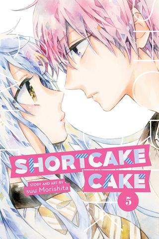 Shortcake Cake GN