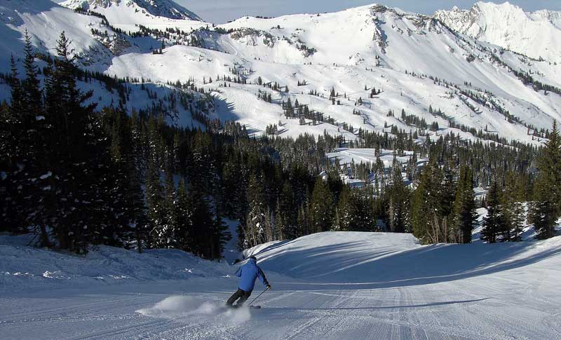 Alta can be harvested for powder earlier than anywhere—January is prime time.