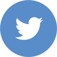 Twitter icon circle